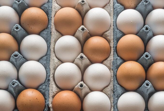 Geen 'vrije uitloop' eieren meer