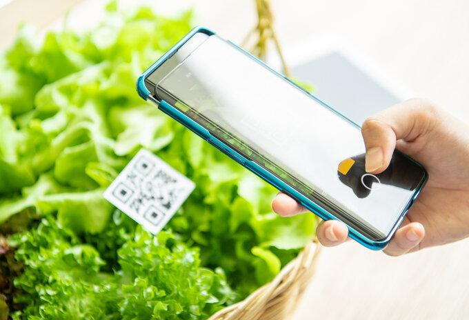 Online verkoop voeding stijgt