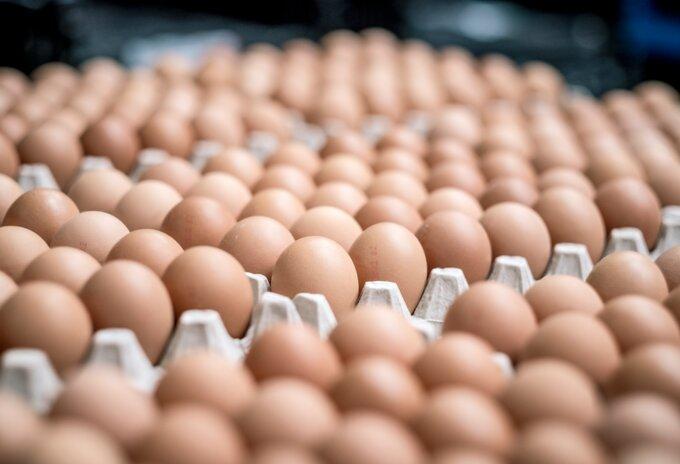 Thuisverbruik eieren boomt