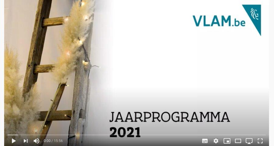 Jaarprogramma VLAM 2021